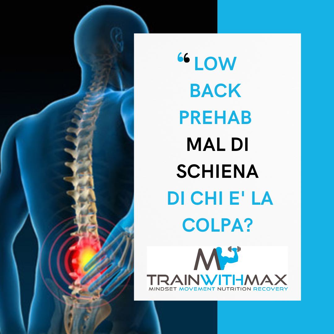 Low Back Pain Prehab: mal di schiena, di chi è la colpa? (parte 3)